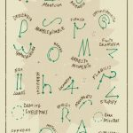Beginner's Guide to # Harry Potter Wand Moves - # Tattoo Ideas