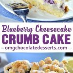Blueberry cheese cake crumble cake, # blueberry cheese cake # crunchy cake