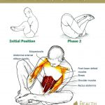 24 Exercises in 3 Series – All about Your Back, Spine & Posture - The Health S...