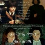 Severus Snape 🖤❤️From his first sentence, we should have captured ...