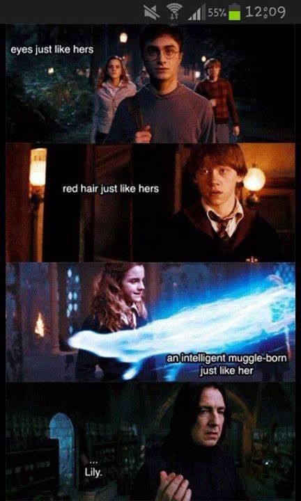 They are lily…. That's why Snape hated them! They reminded him of Lily!!!
