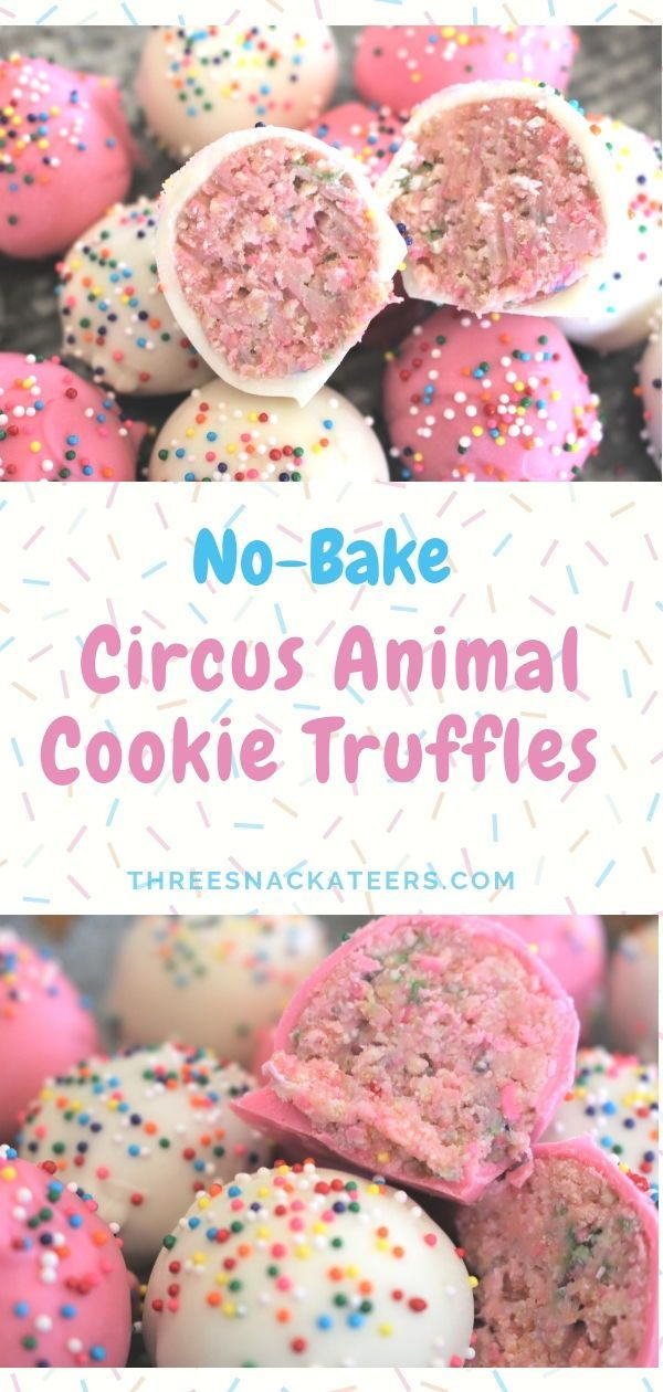 Making sweet treats doesn't need to turn your kitchen into a zoo. All you need a…