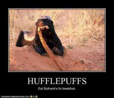 20 Best Hufflepuff Memes & Harry Potter Quotes To Celebrate Hufflepuff Pride Day…