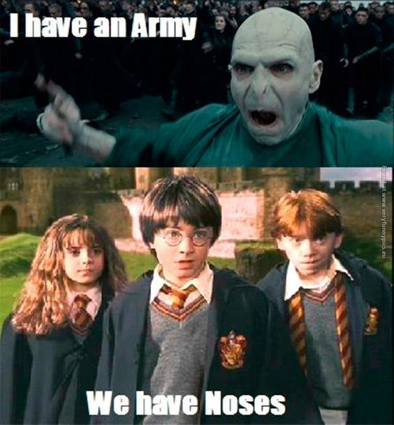 Harry Potter Memes – Only A True Potterhead Can Understand (Part 2) – #Harry #…
