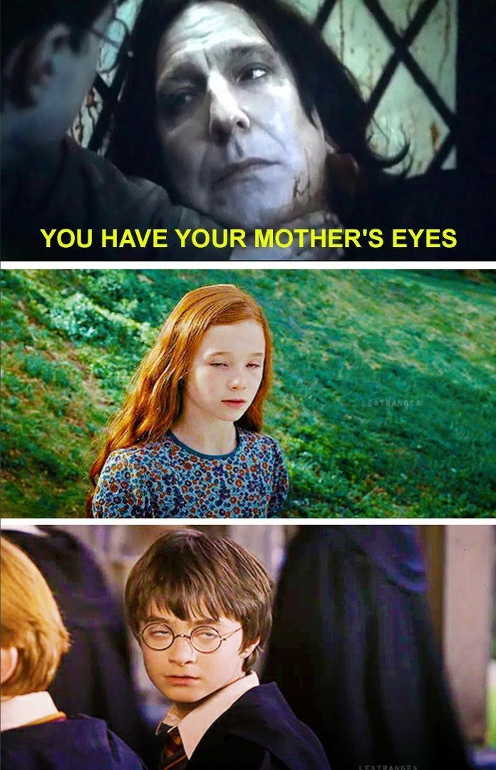 Insanely funny Harry Potter memes will upset you from a broom ride -…