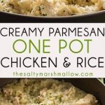 This creamy parmesan stew with chicken and rice is the simplest chicken ... -...